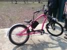 rosa_hybrid_3
